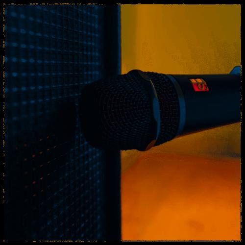 SE Electronics V7 X Microfono Per Strumenti