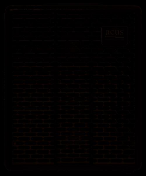 Acus One Forstrings 5T Simon Black Amplificatore