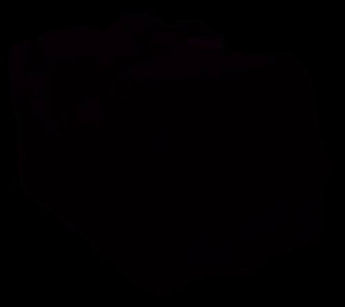 Mackie Thump15A / BST Bag Borsa Per Casse