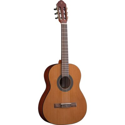 Eko Guitars Vibra 75 Natural