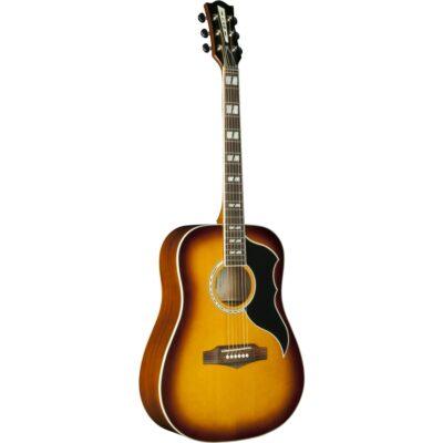 Eko Guitars Ranger VI VR Honey burst