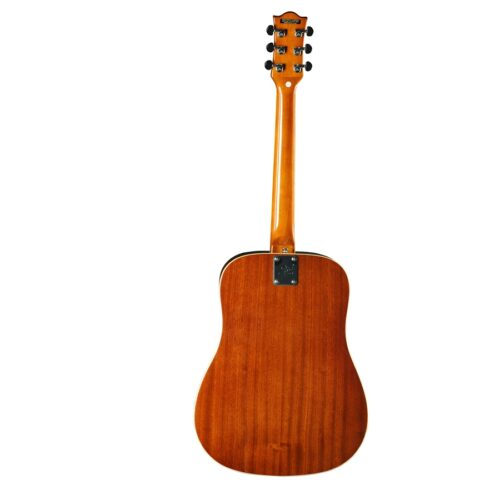 Eko Guitars Ranger VI VR Natural Top Stained