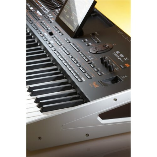 Korg Pa4X Oriental-61 Tastiera Arranger