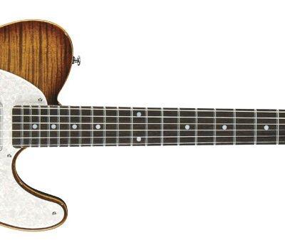 Michael Kelly 1953 - Chitarra elettrica - Caramel Burst