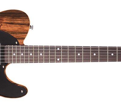 Michael Kelly 1955 Custom Collection - Chitarra elettrica - Ebano Striato